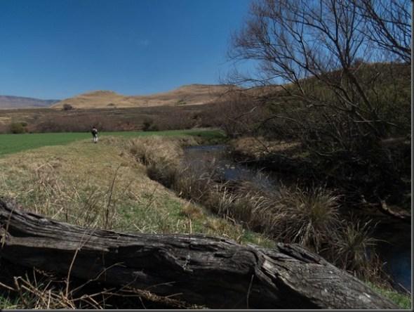 Umgeni River (16 of 17)