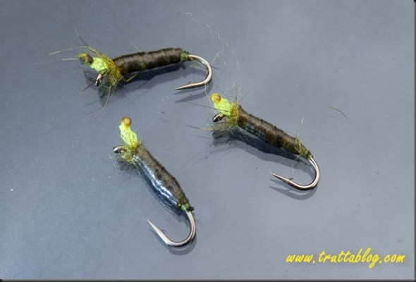 peeping caddis (1 of 1)-2