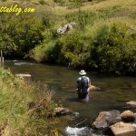 Flyfishing in the Drakensberg