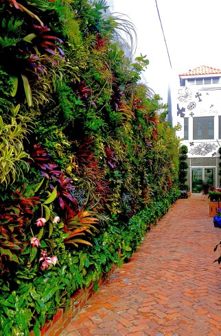 Elegant Biophilic entrance to Chrome Hearts Miami Florida , Best Green Vertical Garden in Miami Florida By Biophilic Designer , Jeffrey Allis Of turvine design