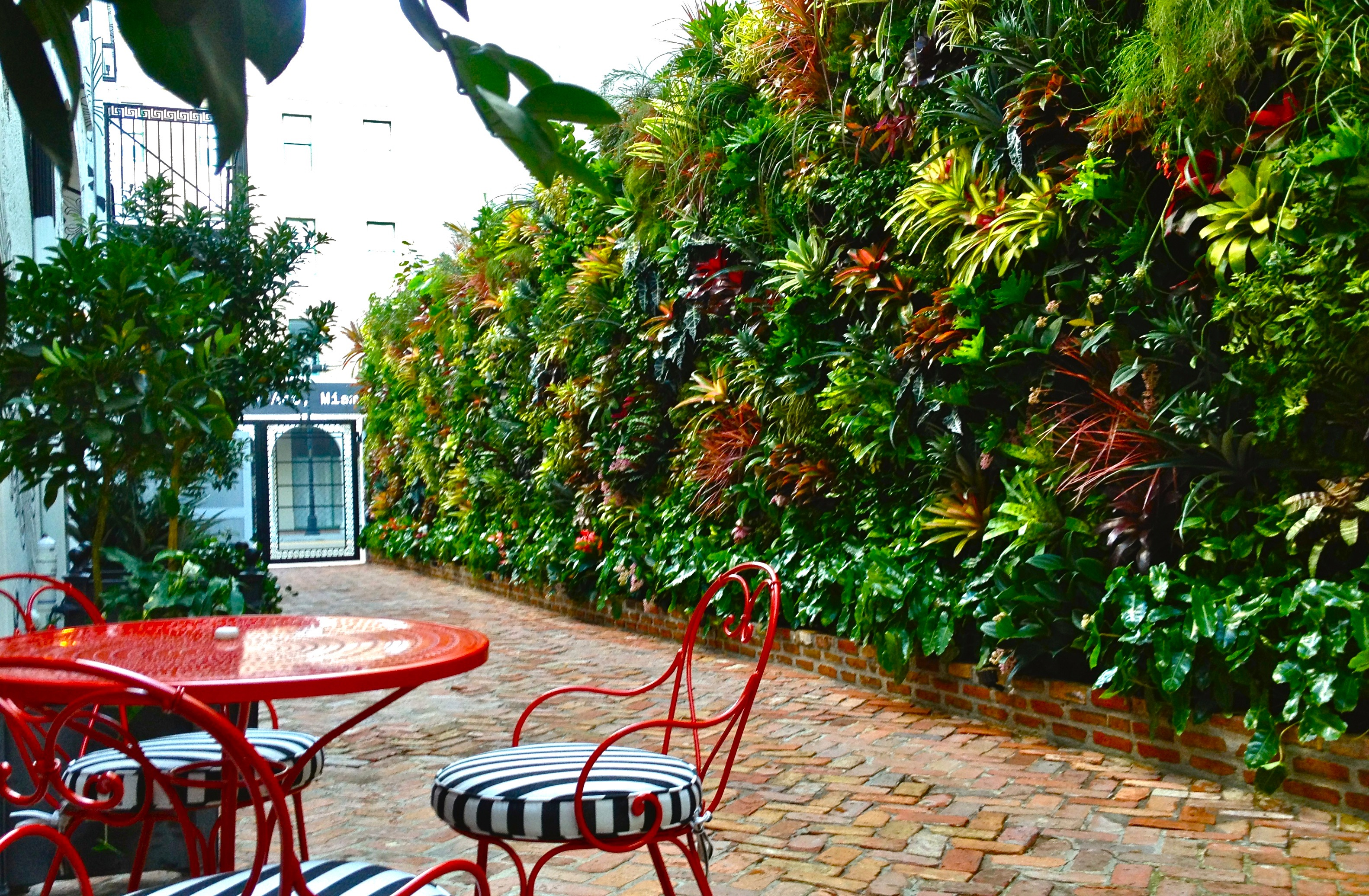 Living wall | Vertical Garden In Miami Fl USA Created and designed by Biophilic designer Jeffrey Allis / truvinedesign