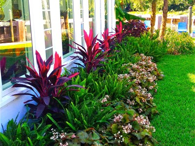 Biophillia Principles By Biophilic designer Jeffrey Allis In Delray Beach Florida