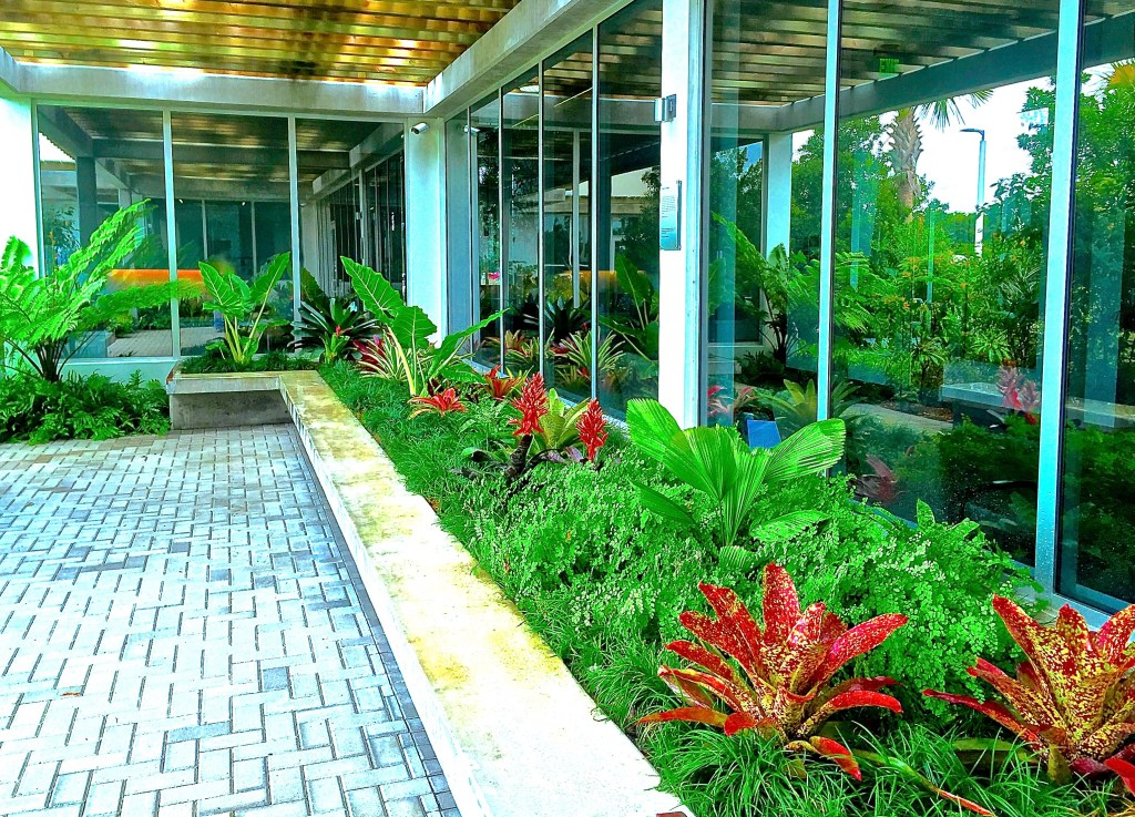 Biophillia principles in well Building | Biophilic design by Biophilic designer by Jeffrey Allis In Delray beach Florida