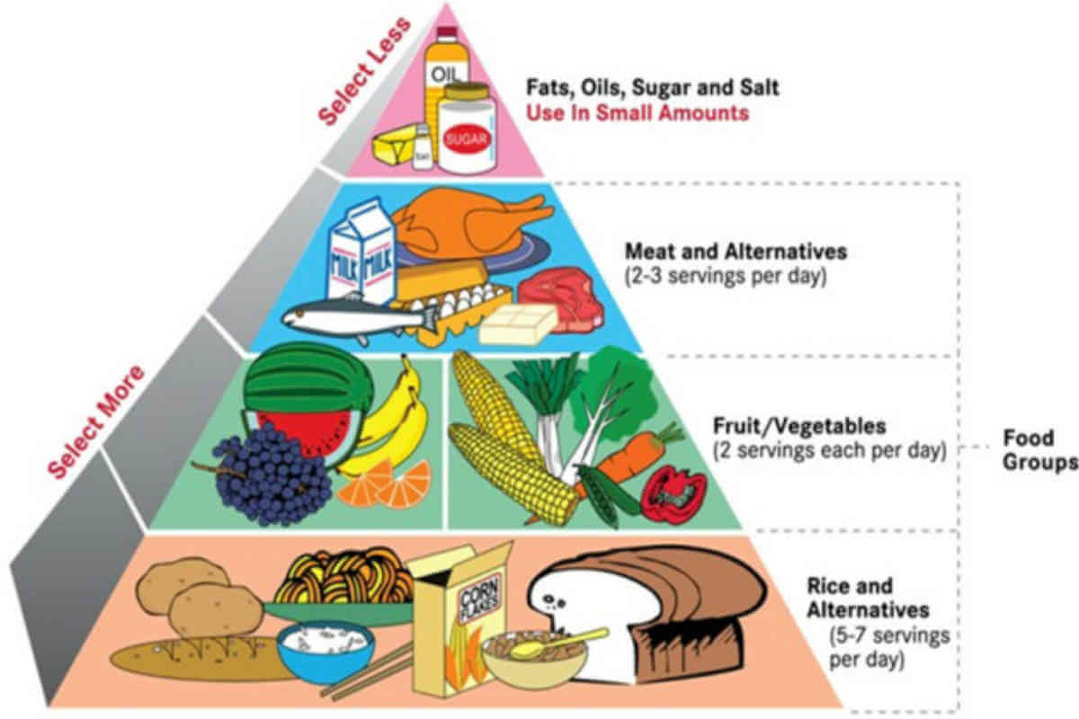 diagram food guide parallel wiring balanced diet chart 10 ways to maintain a