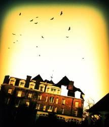 Horrifyingly Haunted Hotels Inspired American Horror