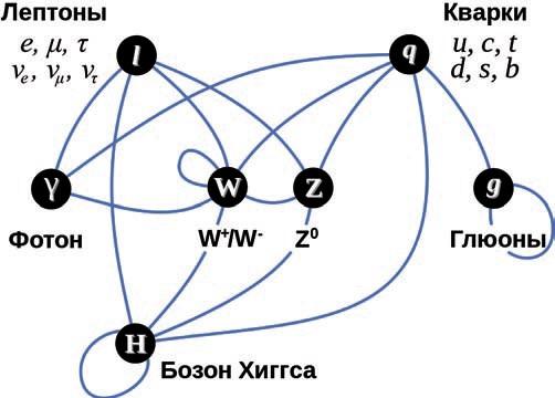 """Взаимодействие между различными частицами в стандартной модели (""""Википедия"""")"""