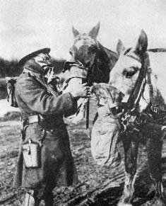 Оборона Осовца. 1915 год