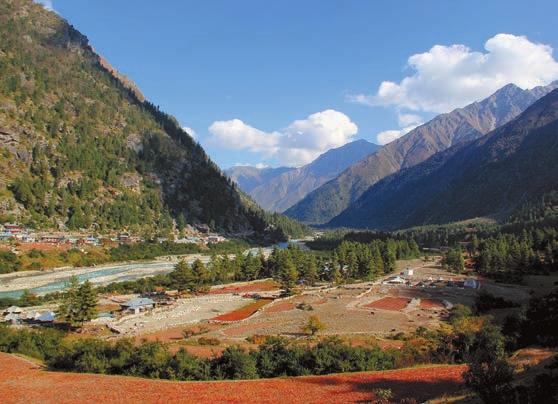 Долина Баспа близ деревни Ракчам. 2 октября 2011 года. Фото В. Скворцова