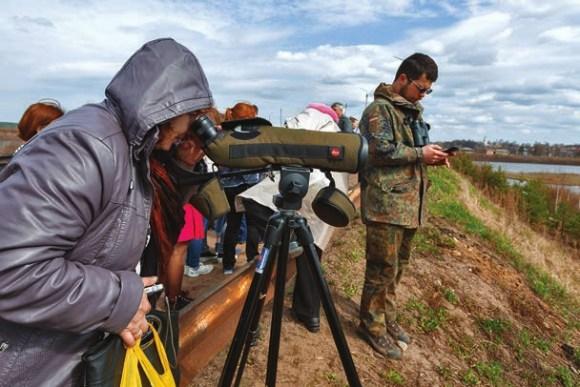 Кологривчане наблюдают за гусями в подзорную трубу орнитологов