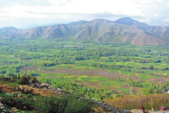 Кашмирская долина,  26 апреля 2013 года.  Фото А. Андреева