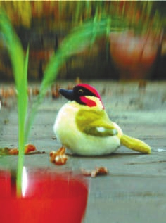 Рис. 2. Фотография сделана камерой с вертикальной щелевидной апертурой, сфокусирована на игрушечной птичке, так что ближние и дальние объекты размыты, но вертикальные линии видны более четко, чем горизонтальные (Banks et al., 2015)