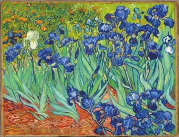 Винсент Ван Гог. Ирисы (1889). Музей Гетти (Лос-Анджелес, США)