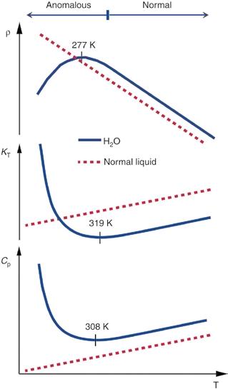 Сравнение поведения плотности, сжимаемости и теплоемкости воды (сплошная линия) и обычной жидкости. Плотность после +4 ºС убывает, тогда как у обычной жидкости растет, со сжимаемостью и теплоемкостью ситуация обратная. Изображение: Nature