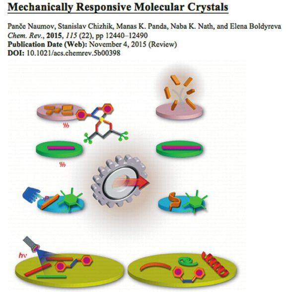 Один из итогов продолжения совместных исследований — всесторонний обзор по хемомеханическим эффектам в молекулярных кристаллах в Chemical Reviews. Будущее за этим направлением