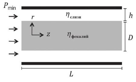 3. Схематическая модель дефекации. Экскременты подобны пробке, скользящей по кишке-трубке, стенки которой покрыты слизью (пояснения в тексте)