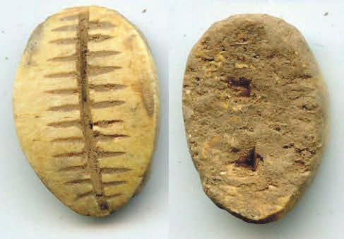 6А. Имитация каури из кости, династия Чжоу, 1046–771 годы до н. э. [3]