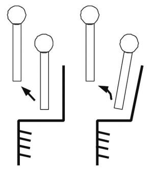 Два возможных варианта движения верхней части туловища Нисы — поступательное и вращательное