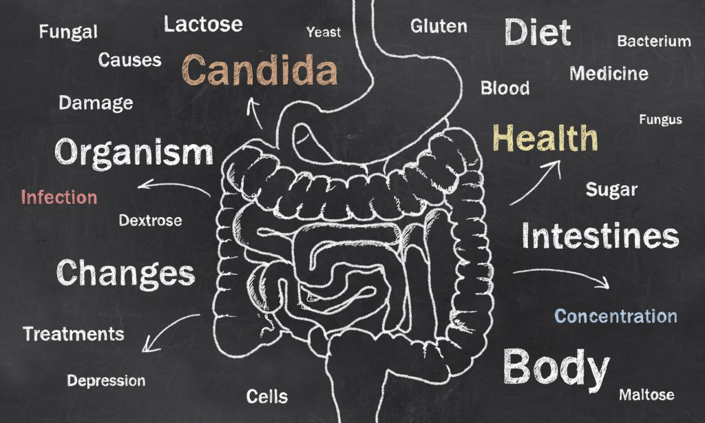 How To Get Rid Of Candida Naturally