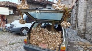 にんにくいっぱいの車:サフランボル