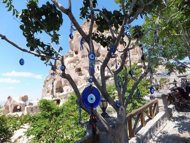 ウチヒサルの前にあった木
