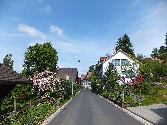 おばちゃんの家の前の通り:スイス