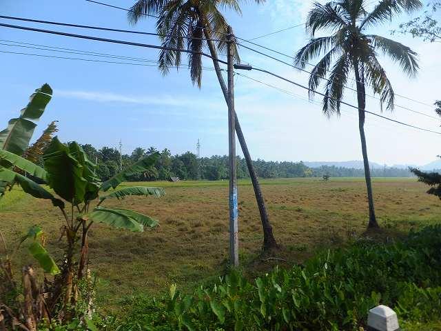 スリランカの景色(ネゴンボ~グルネーガラ)