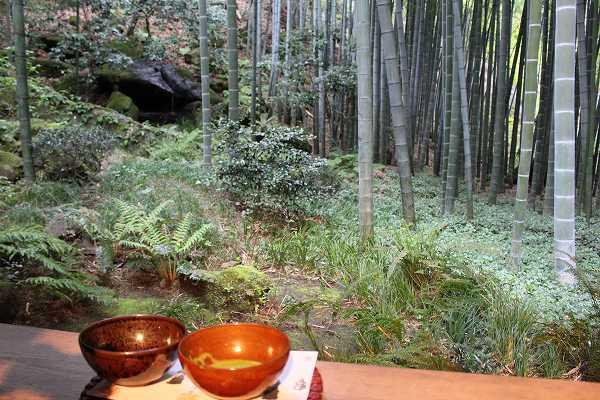 報国寺報国寺「休耕庵」からの贅沢な景色