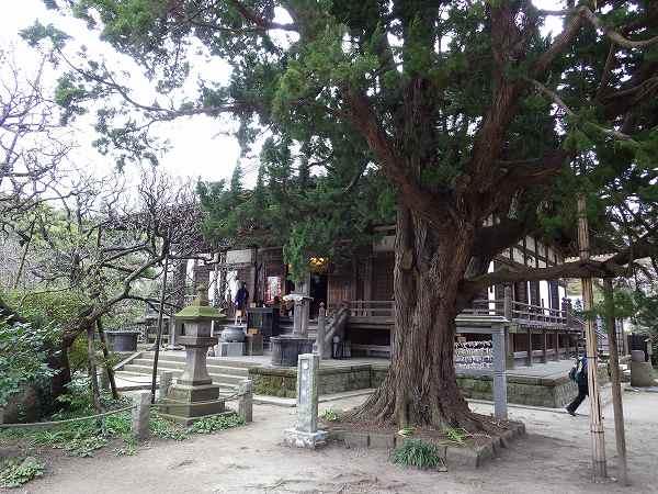 素朴な感じの鎌倉:宝戒寺