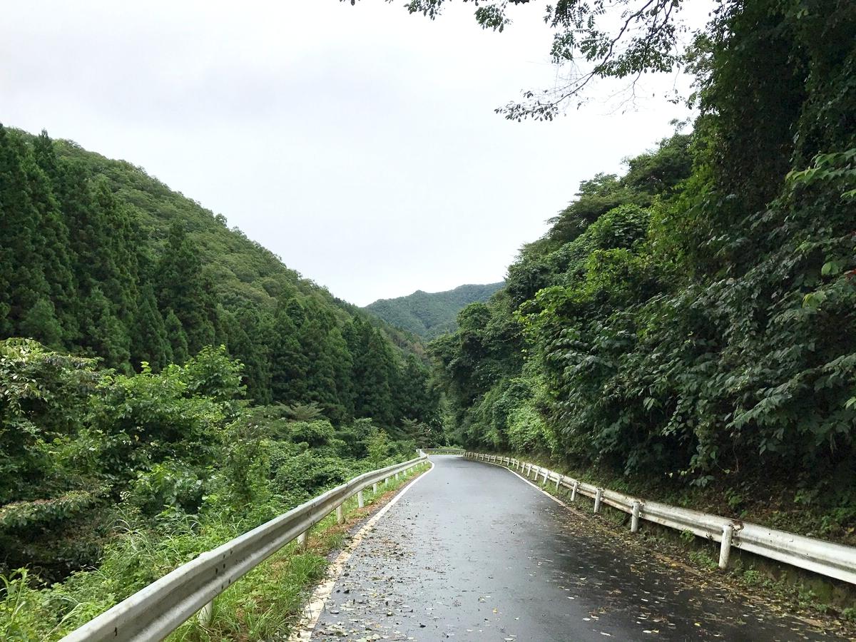 本当に山の中です!追分温泉への道!