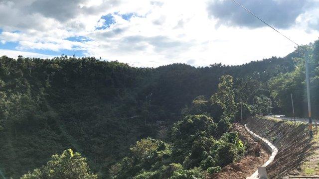 遠くから見るタマラオの滝