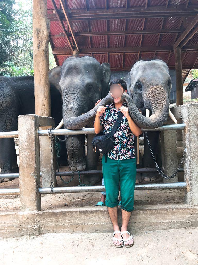 象とキス・メーサーエレファントキャンプ