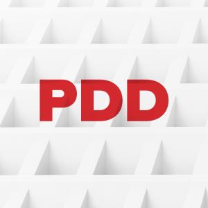 PDD Project Development Documentation