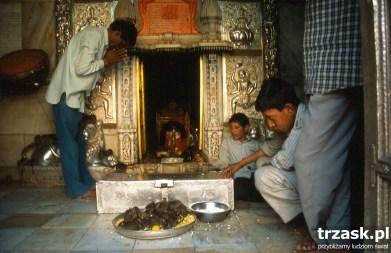 Karni Mata - Rat temple, Deshnok
