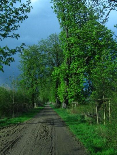 Tavasz Hannoverben