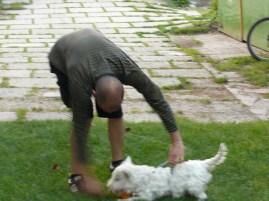 Megnyúztuk a kutyát