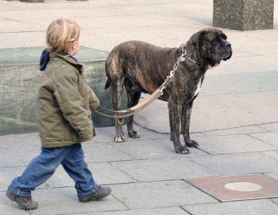 Kis srác nagy kutyával