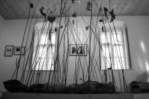 Lázár-Ervin-ház-werkfotó-1098