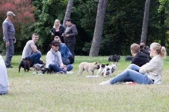 bulldog piknik-0846