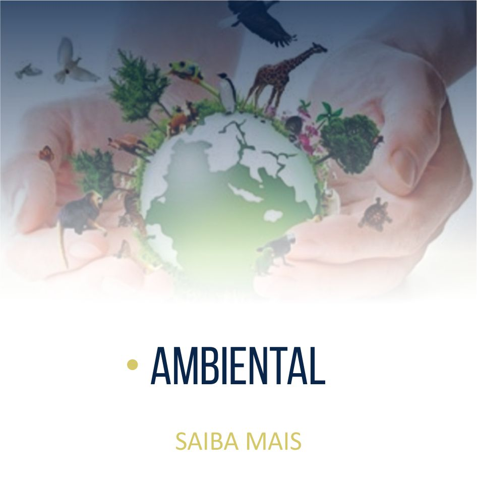 Ambiental_02_ok