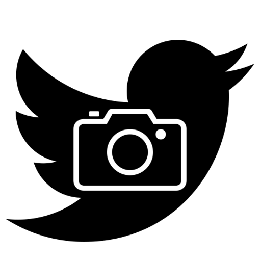 Open Twitter Media logo