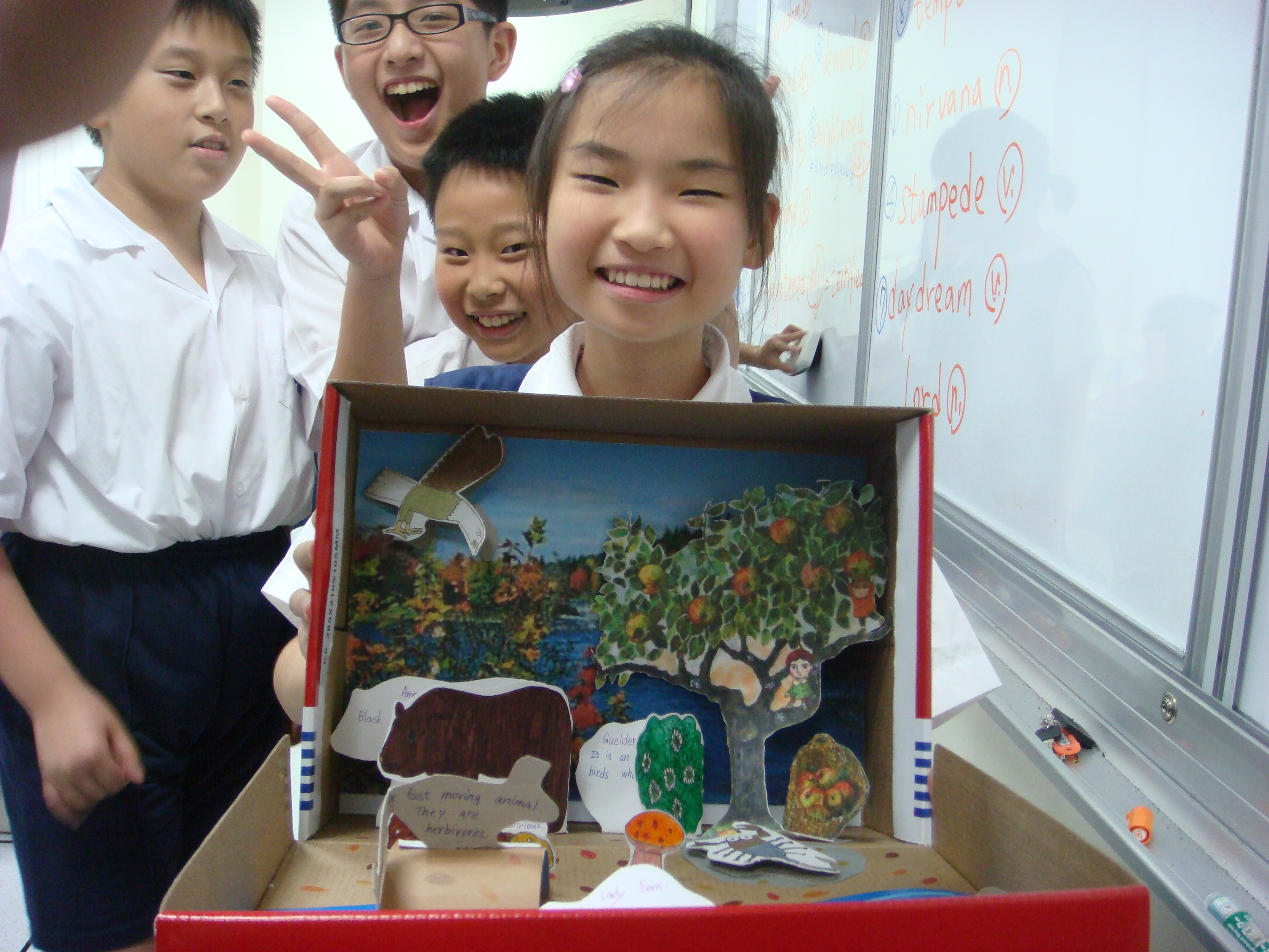 Diorama Show Biome Of The Deciduous Forest