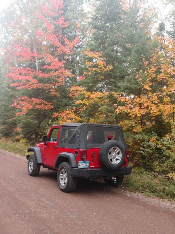 Field Trip Leaf tour