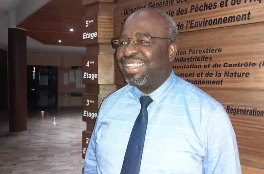 """L'AEAFFB en récupération des """"bois abandonnés"""" en forêt gabonaise."""