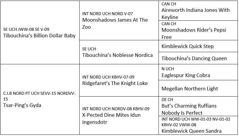 stamtavle_kull_05