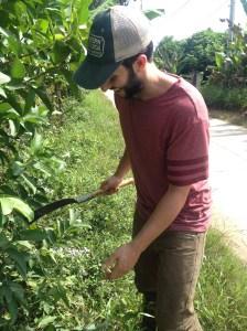 Machete to the jungle