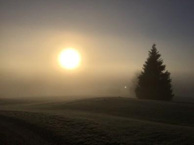 Sich im Nebel der Midlifecrisis zurechtfinden