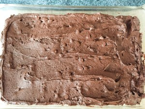 This is a great cocoa Nutella brownie recipe because you can do so many things with it.