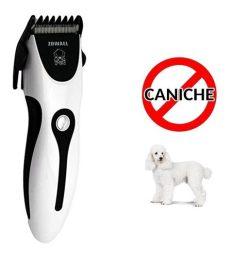maquina para cortar pelo de perros caniches maquina de cortar pelo para perros caniches noticias perro