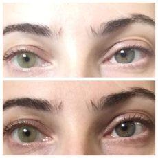 solotica mel contacts solotica hidrocor mel contact lenses reviews photos ingredients makeupalley