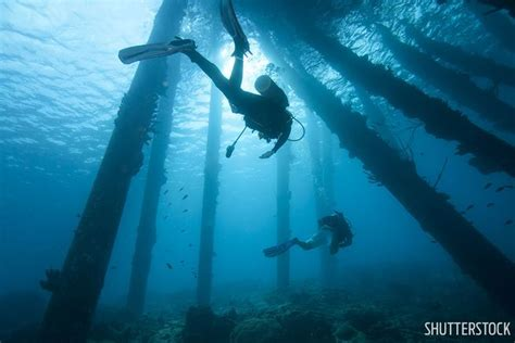 Scuba Diving Trips For Beginners